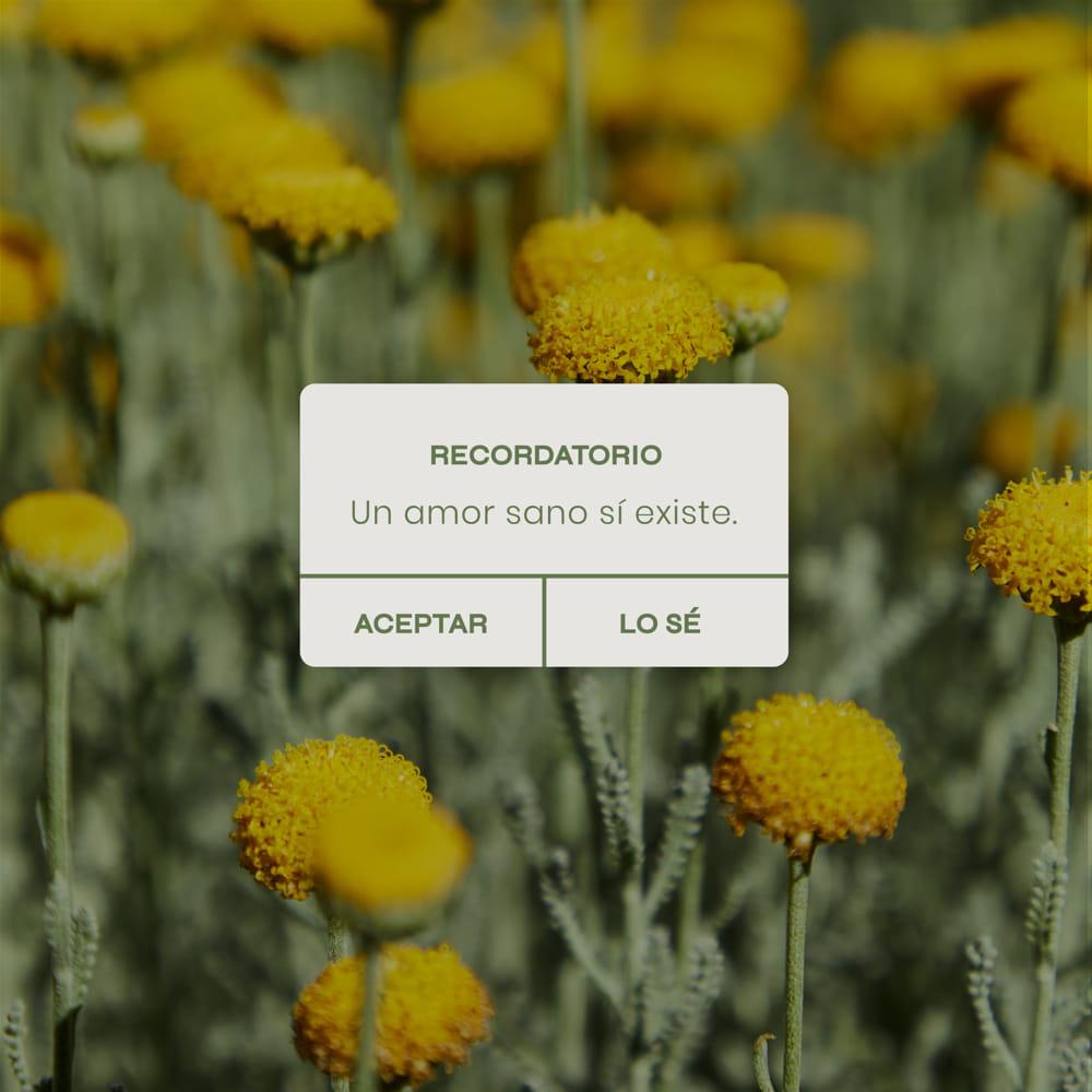 Recordatorio Cristina Samaniego
